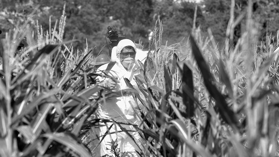 glifosato-gualeguaychu-veneno-agrotoxicos-ambiente-lucha