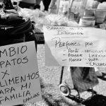 """""""Hay más de 200 espacios de trueque en provincia de Buenos Aires"""""""
