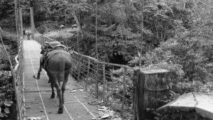 Alto Naya: la guerra en Colombia sigue en territorio indígena