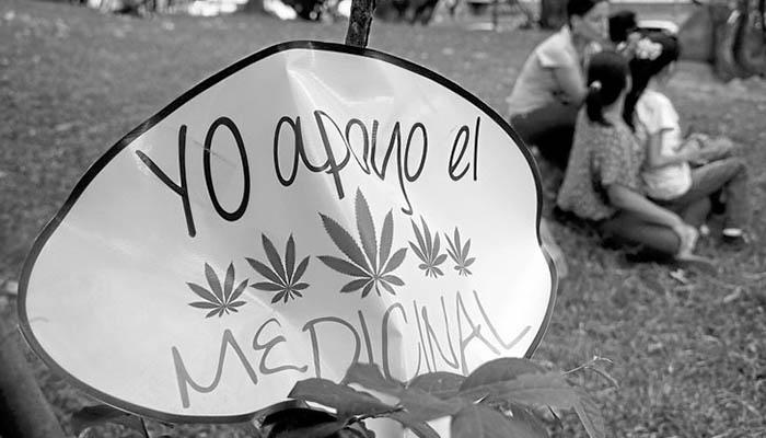 cannabis-6-ley-uso-marihuana-medicinal