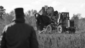 Desalojo en Juarez Celman: están destrozando las viviendas