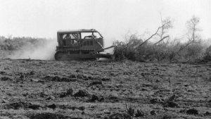 El Chaco paraguayo en la mira de la soja