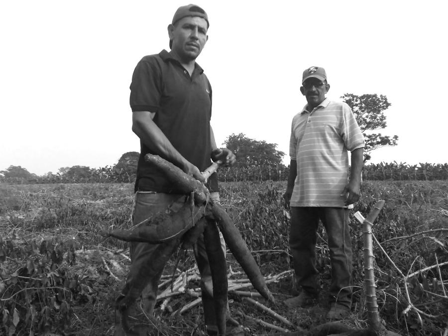 Venezuela-ciudad-comunal-campesinos