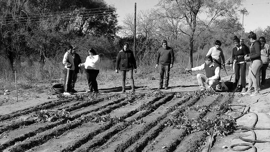 molinos-trabajadores-unidos-tierra