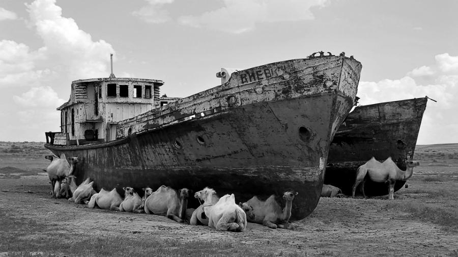Mar-de-Aral-barcos-y-camellos-la-tinta