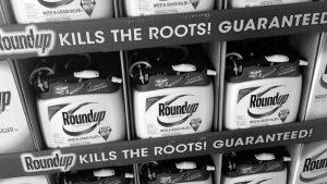 Empezó el tercer juicio por cáncer al Roundup de Monsanto