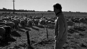 """De la soja a la ganadería holística: """"Hay menos costos y sobre todo más calidad de vida"""""""
