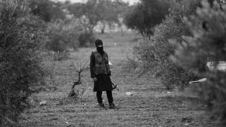 Afrin campos de olivos terrorista