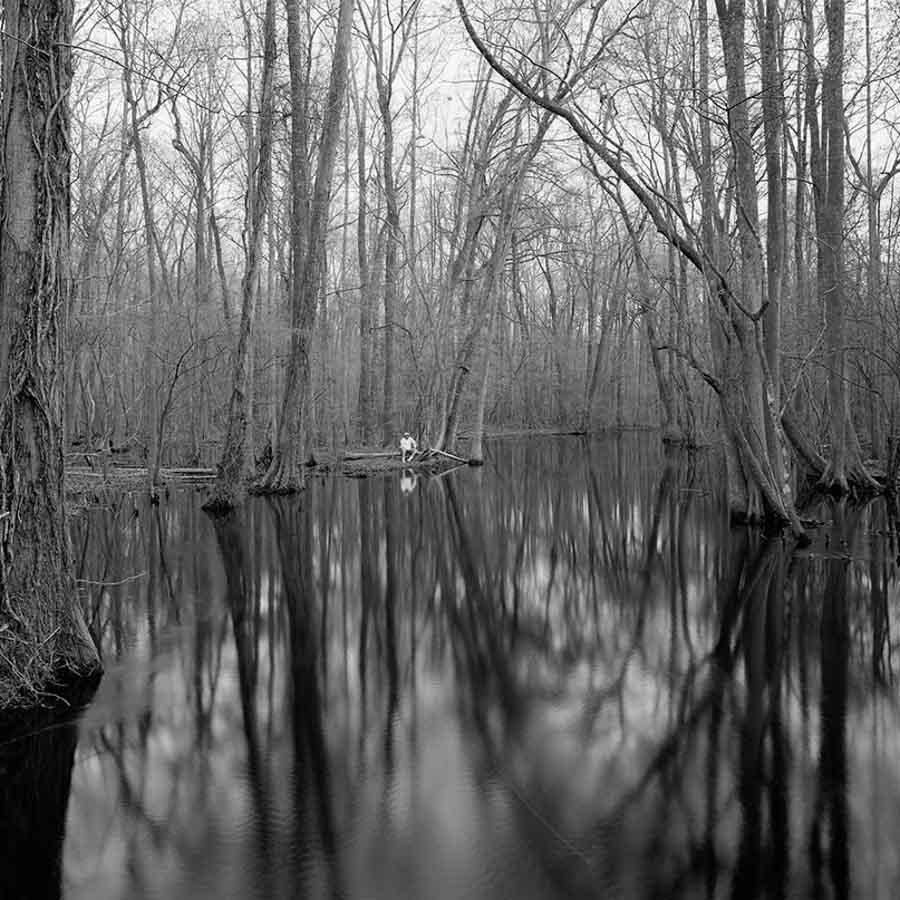 Eliot-Dudik-paisaje-bosque-lago-hombre-solo