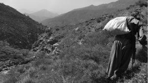 Conversaciones en las montañas de Kurdistán