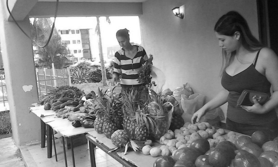 Venezuela Comuna El Maizal frutas verduras la-tinta