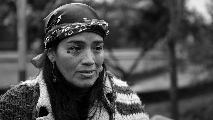 Ivana-Huenelaf-mapuche-mujer-Joaquin-Diaz-Reck-01