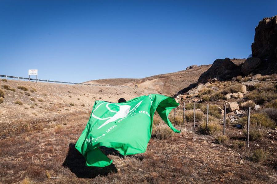 Vivian-Ribero_La marea verde en la bienal_07