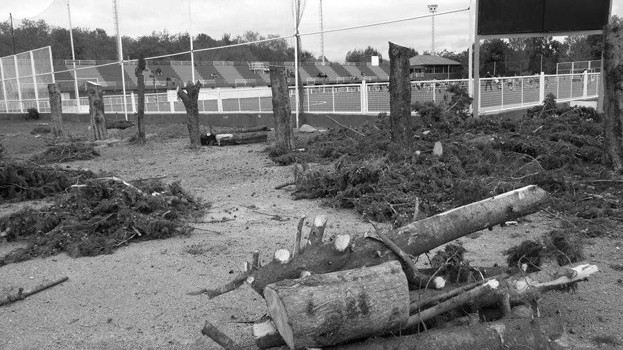 estadio-hockey-camping-reserva-sanmartin2