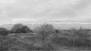 El norte cordobés, asediado por desmontes químicos de los ganaderos