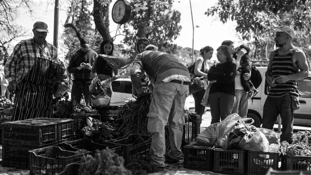 Semillas-Feria-Agroecologica-Cordoba-verduras-Colectivo- Manifiesto
