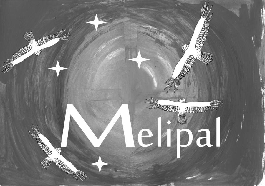 Melipal-emprendimiento-mapuche-06