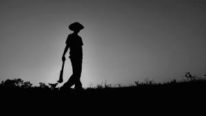 Triunfo campesino sobre Bayer y Monsanto