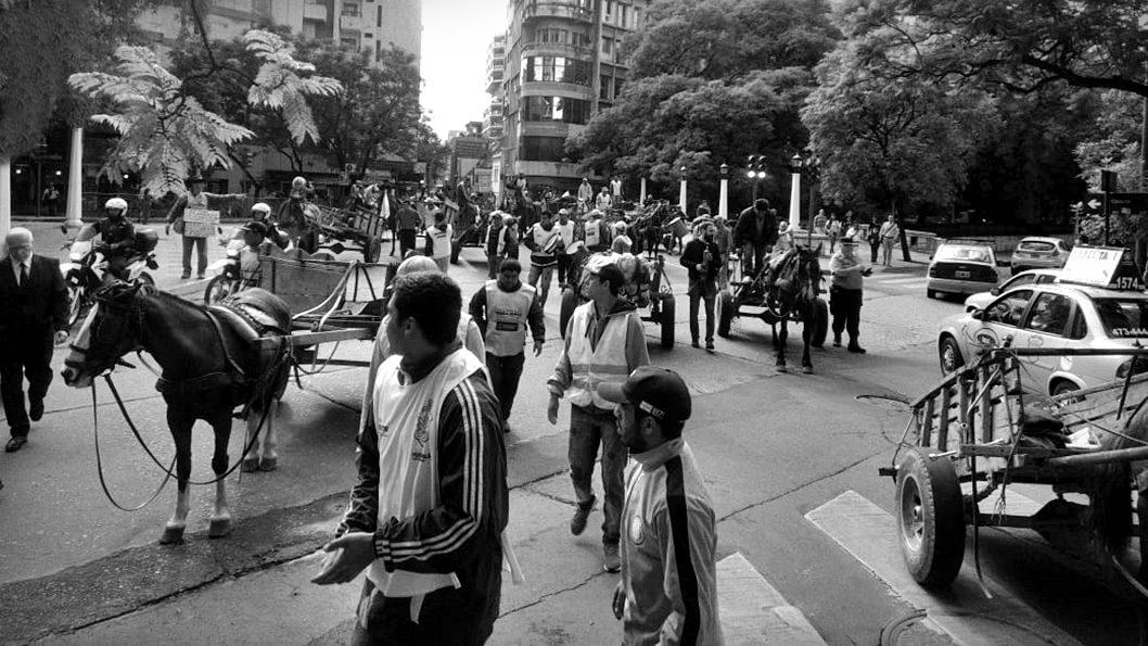 carreros-trabajo-municipalidad-cordoba2