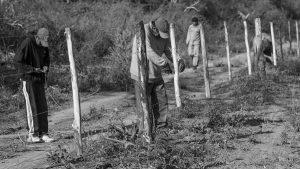 Salta: intentan desalojar a comunidades indígenas wichi de Tartagal