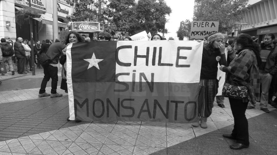 Chile sin Monsanto la-tinta