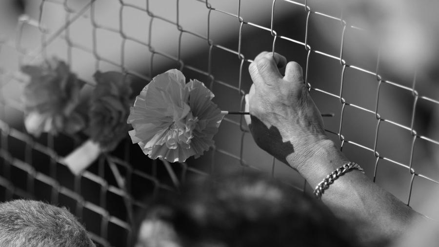 Flores-24-marzo-dictadura-lesa-humanidad-colectivo-manifiesto