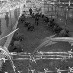 Estados Unidos: Prisiones secretas o una temporada en el infierno