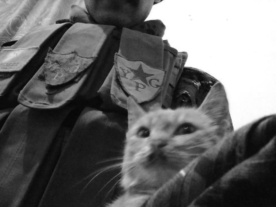 Kurdistan sirio combatiente YPG la-tinta