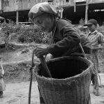 Myanmar: un país de guerra y té