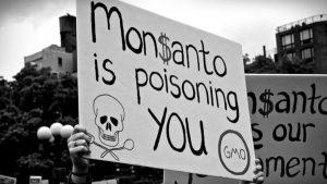 Otra condena contra Monsanto por causar cáncer, y se vienen 11.200 demandas más en Estados Unidos