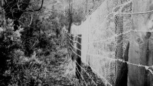 """Comunidad Celestino Quijada: """"Nos cerraron el paso"""""""