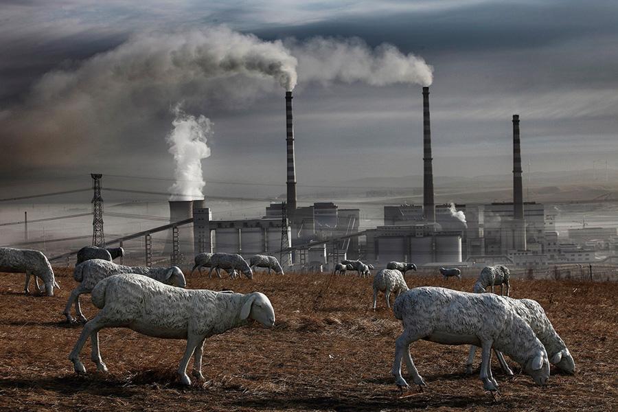 """Debido a la explotación de las minas de carbón, las praderas de Holingol quedaron devastadas y desprovistas de ganado vacuno y ovino. Para """"mejorar"""" la imagen de la zona, el gobierno local instaló más de 120 esculturas de ovejas y caballos. © Lu Guang"""