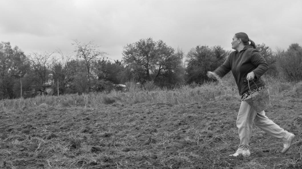 Siembra-campo-personas-sembrando-semillas-agroecologia-colectivo-manifiesto-05