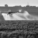 #HilandoFino: el desastre de los agrotóxicos en Argentina
