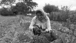 El campo que nos alimenta, camino al Primer Foro Agrario Nacional