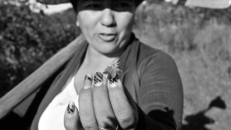 Belen-Romero-mujeres-campesinos-campo-trabajadoras-Paraguay-02