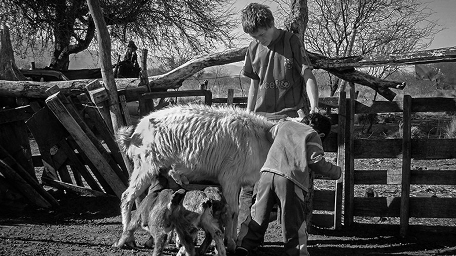 agricultura campesina traslasierras1