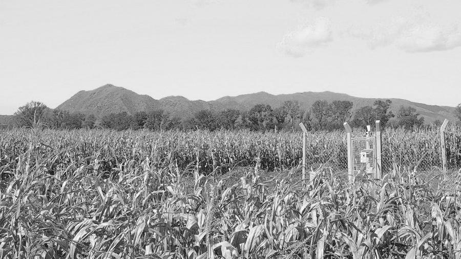 cosquin-agrotoxicos-agroquimicos-agro-plantacion