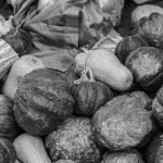 Soberanía alimentaria: recuperar el alimento