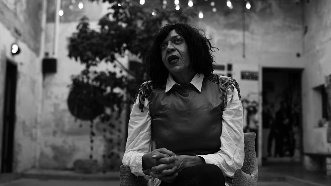 Marlene Wayar travestis1