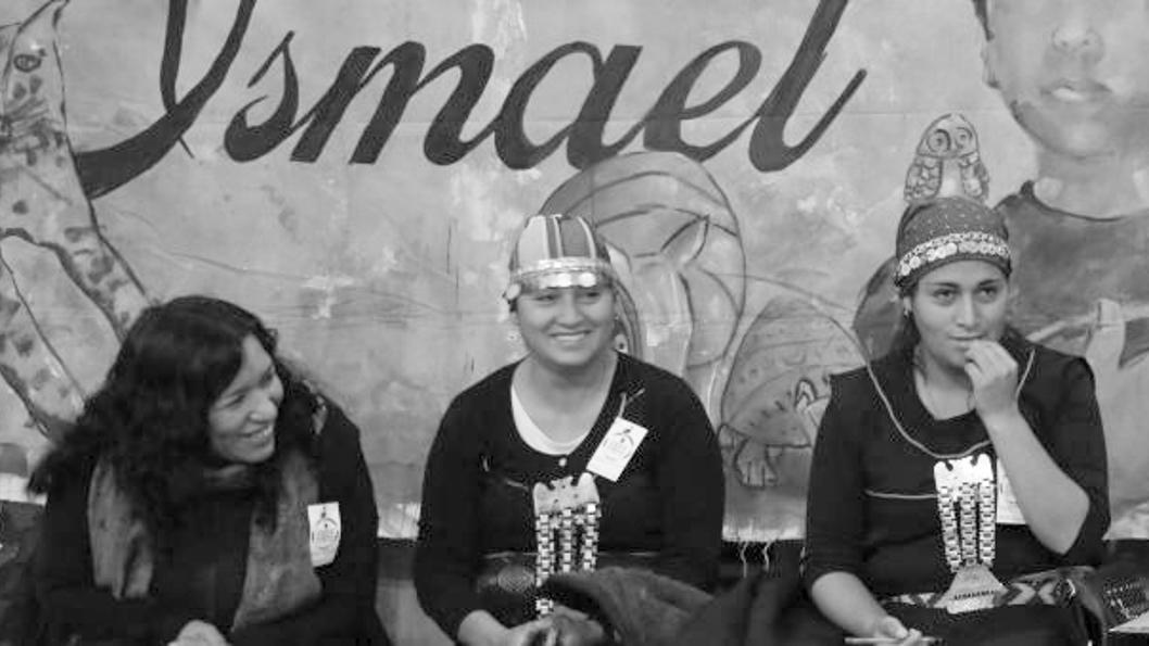 Karina-Fernandez-Parlamento-mujeres-indigenas-buen-vivir-pueblos-originarios-01