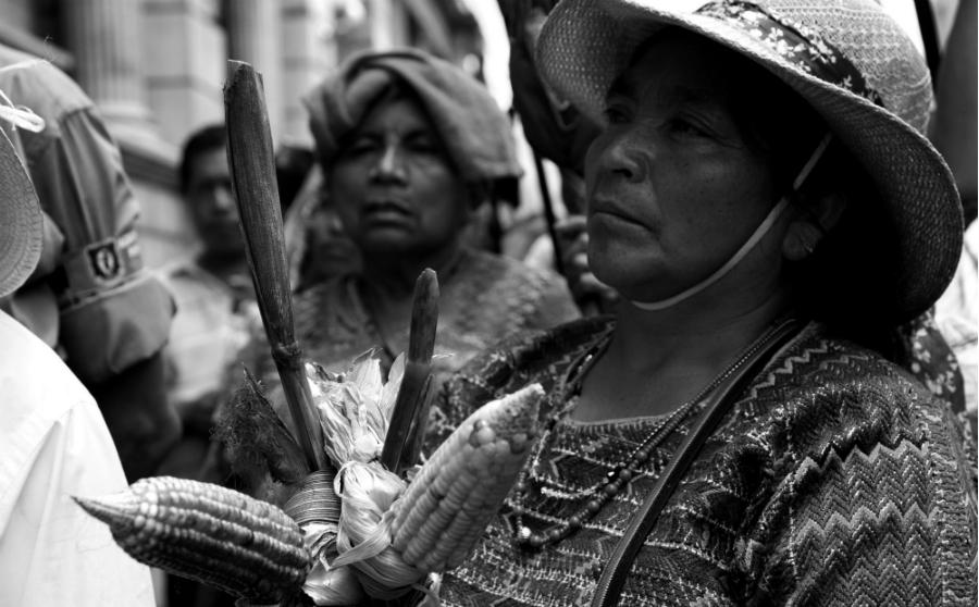 Mexico Campeche campesinas mayas la-tinta