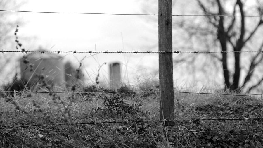 fumigaciones monsanto (3)