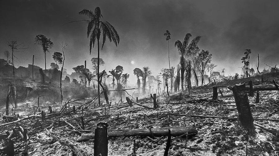 Araquém-Alcântara-Amazona-Brasil-incendios-selva-fuego