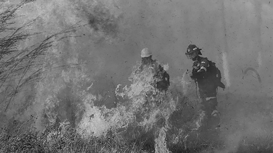 Bolivia Chiquitania incendios la-tinta