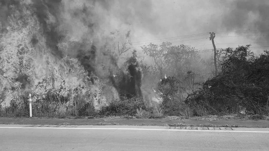 Bolivia Chiquitania incendios masivos la-tinta