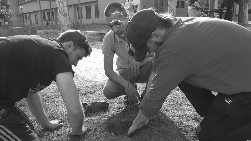 Cooperativa-Cartonerxs-Recicladores-Podemos-Planta-ciudad-artes-01