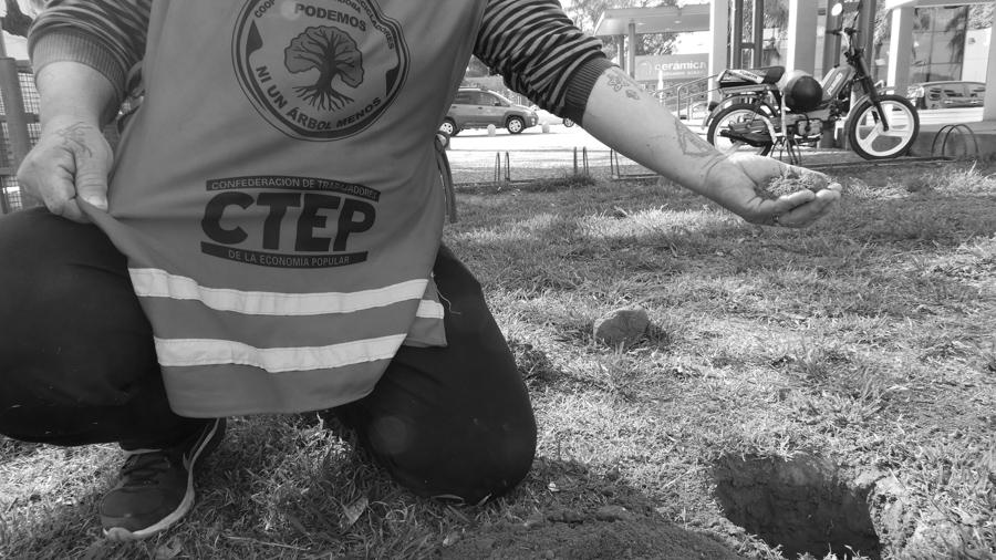 Cooperativa-Cartonerxs-Recicladores-Podemos-Planta-ciudad-artes-05