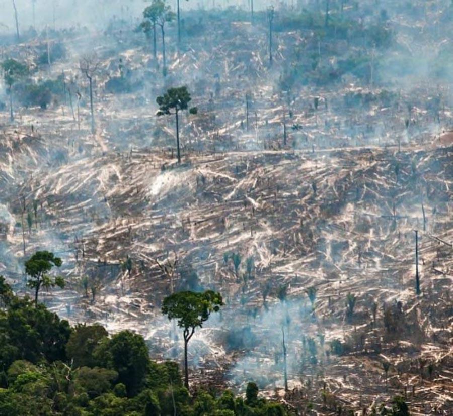 Impactante registro fotográfico de la selva amazónica en llamas_Araquém Alcântara_04