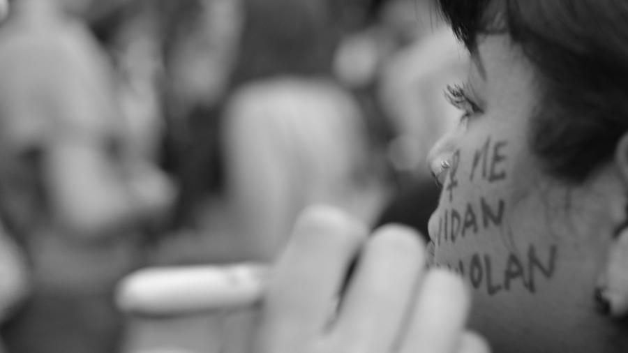 Mexico-feminismo-mujeres-protesta-Lulu-v-Barrera-02